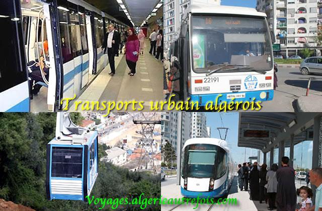 transports urbain algérois